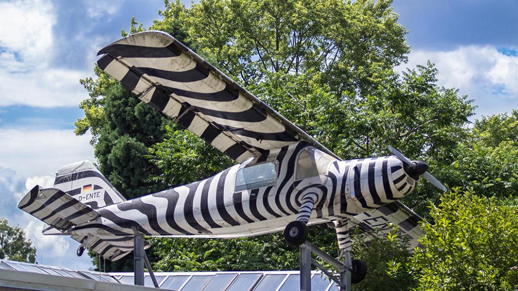 Droht dem Frankfurter Zoo die Schließung?