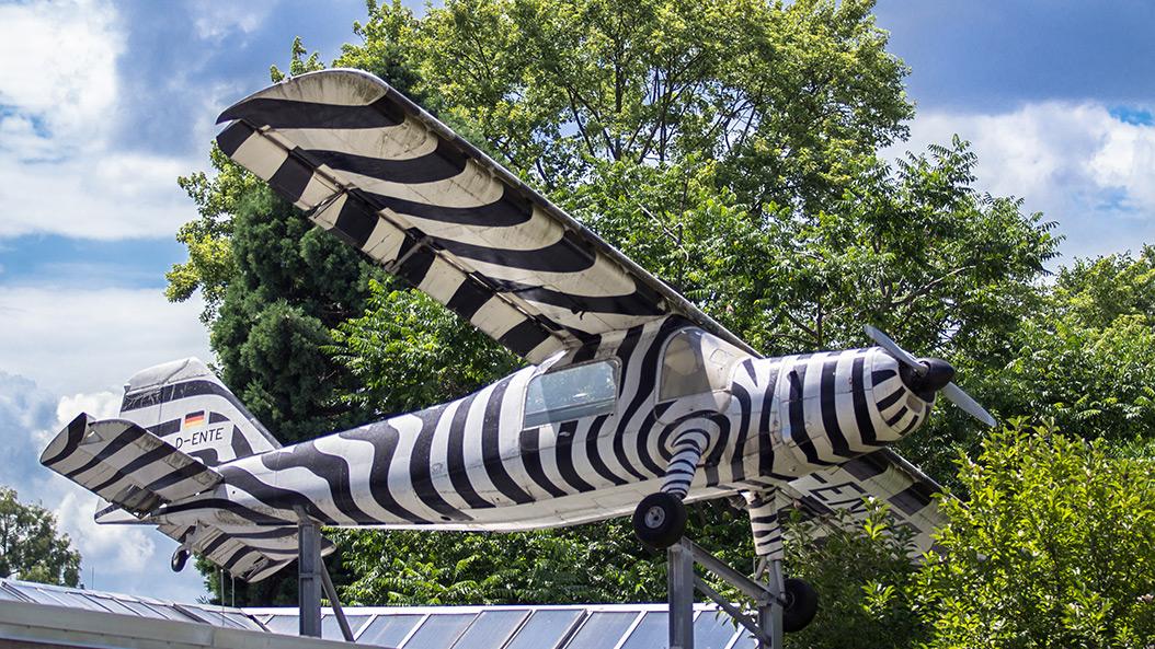 Droht dem Frankfurter Zoo die Schließung