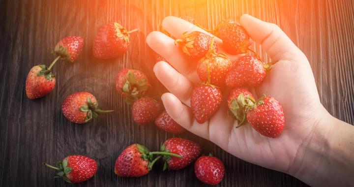 Essen und abnehmen mit dem Handvoll-Prinzip