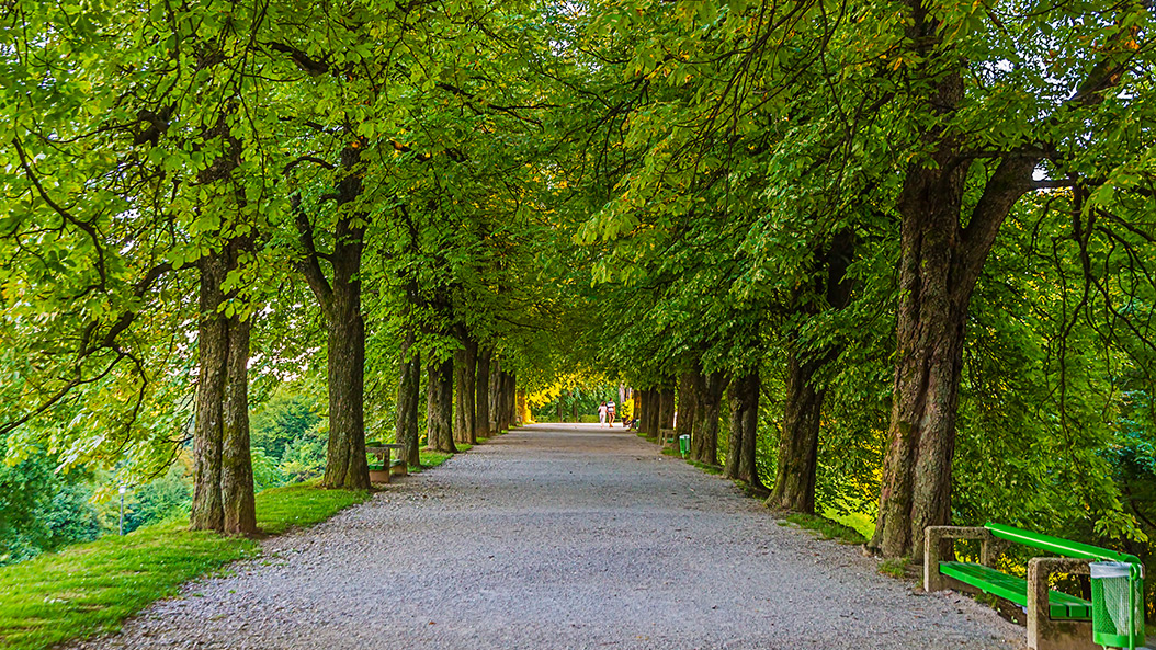 Warum der Nizza-Park einen Zaun bekommt